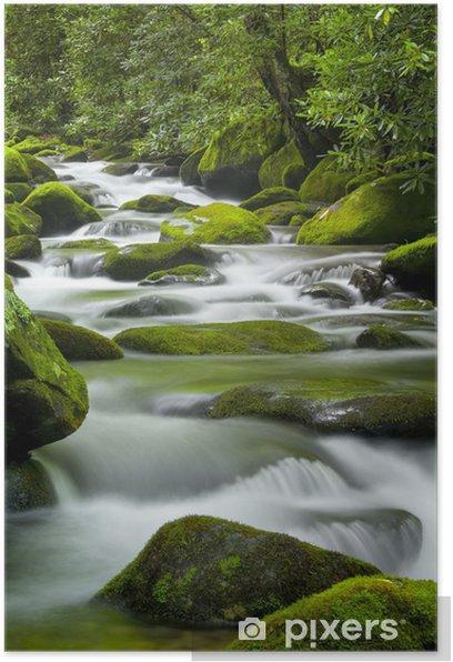 Plakat Ryczące Fork Creek, Smoky Mountains National Park - Woda