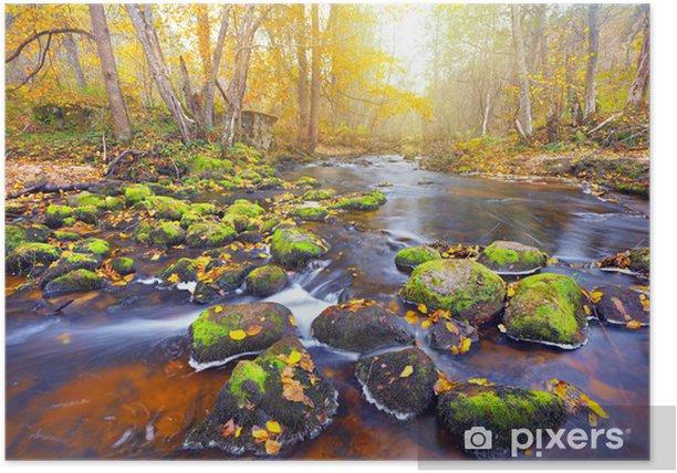 Plakat Rzeka w lesie jesienią - Tematy