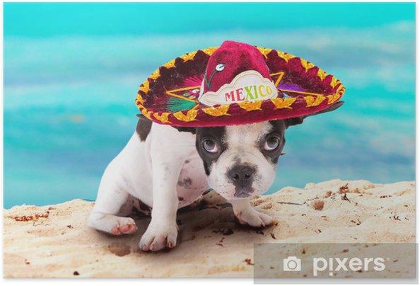 Plakat samoprzylepny Buldog francuski puppy w meksykańskim sombrero na plaży - Buldogi francuskie