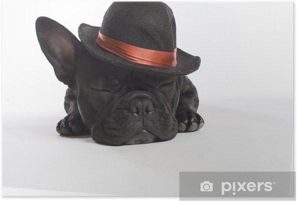 Plakat samoprzylepny Bulldogge - Buldogi francuskie