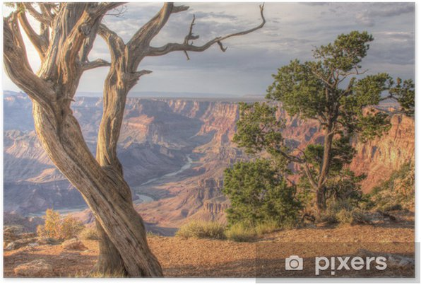 Plakat samoprzylepny Grand Canyon Desert View - PI-31