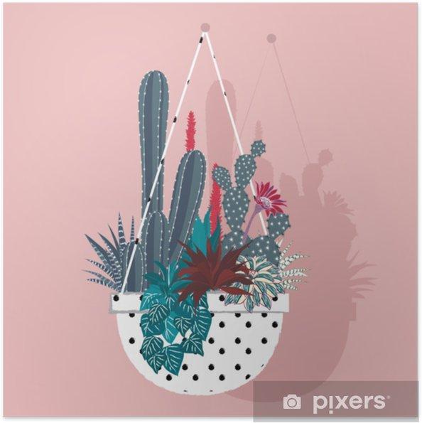 Plakat samoprzylepny Kaktus z kwiatem i aloe vera w doniczkach na białym tle - Zasoby graficzne