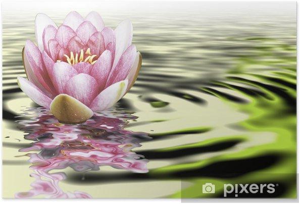 Plakat samoprzylepny Lotus Flower - Tła