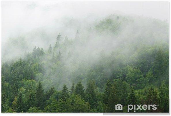 Plakat samoprzylepny Mglisty las - Krajobrazy