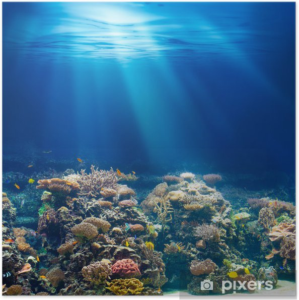 Plakat samoprzylepny Morskiego lub oceanu podwodna rafa koralowa z rurką lub akwalungiem backgrou - Rafa koralowa