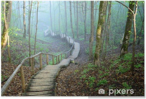 Plakat samoprzylepny Staiway w lesie w silnej mgle znikają - Tematy