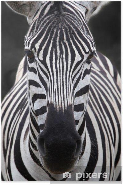 Plakat samoprzylepny Szef zebra - Tematy