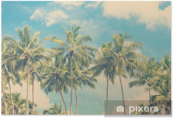 Plakat samoprzylepny Vintage tropikalnych palm - Palmy