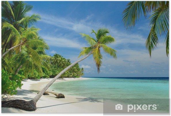Plakat Samotna plaża z palmami - Morze i ocean