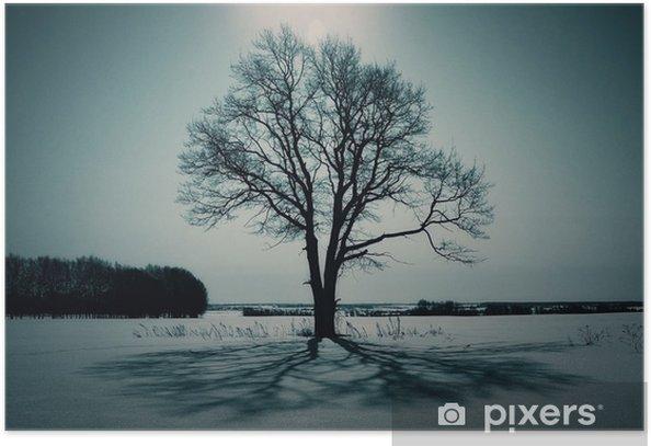 Plakat Samotne drzewo w polu w zimie - Krajobraz wiejski