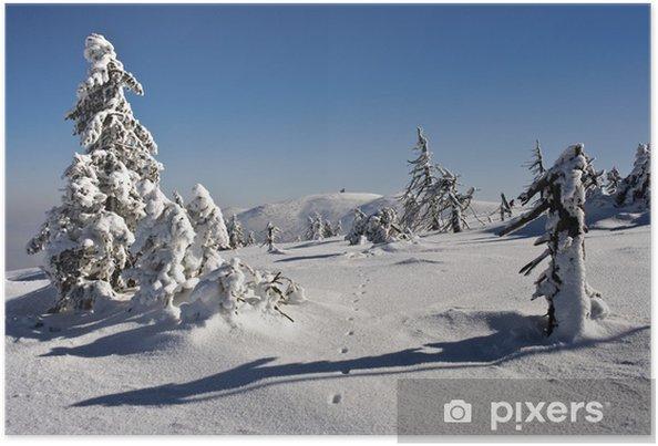 Plakat Sceneria zimowa - Wakacje