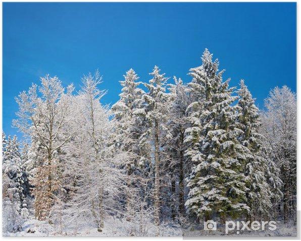Plakat Schneelandschaft - Pory roku