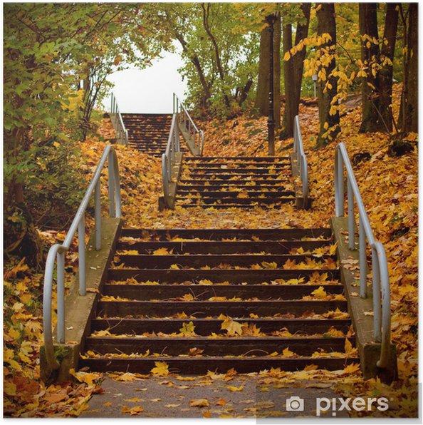Plakát Schodiště pokryté javorových listů - Témata