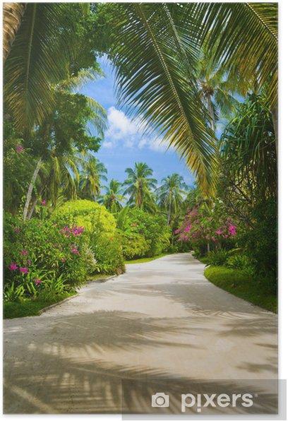 Plakat Ścieżka w parku tropikalnych - Wakacje