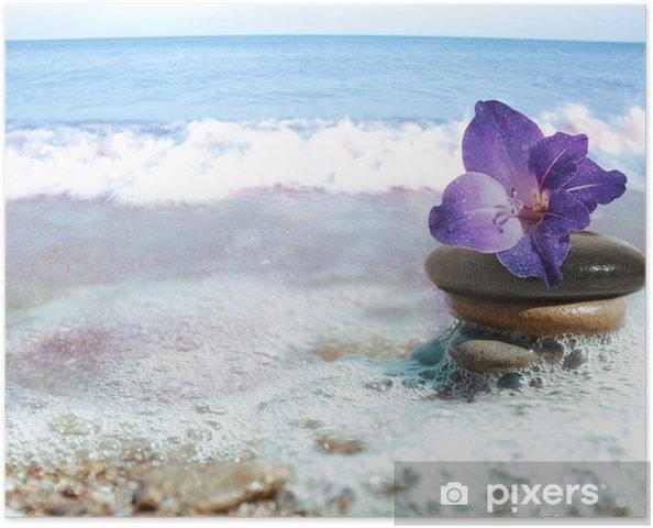Plakat Sea still-life - Zdrowie i medycyna