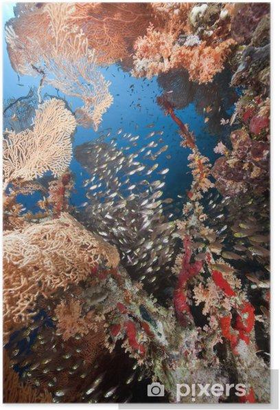 Plakat Seafan i glassfish - Krajobraz wiejski