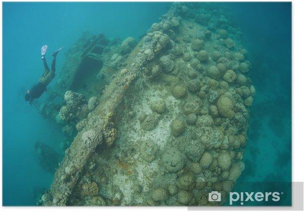 Plakat Shipwreck (4) - Akcesoria
