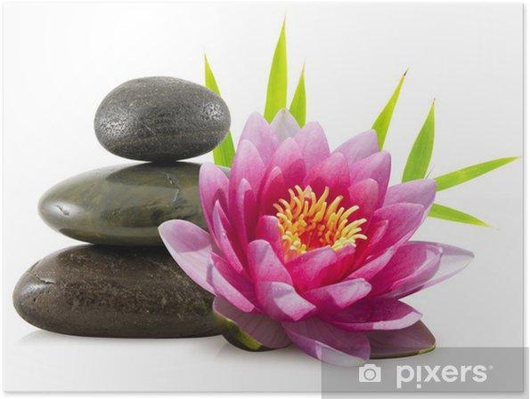 Plakat Skład zen, kamienie, bambus i Lotos - Style