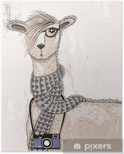 Plakat Śliczne hipster lama z aparatu fotograficznego, okulary i szalik - Zwierzęta