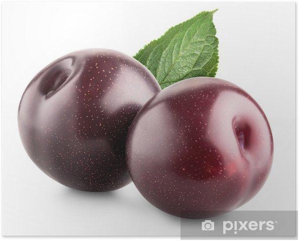 Plakat Słodkie śliwki - Owoce