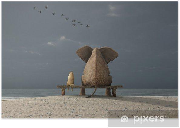 Plakat Słoń i pies siedzieć na plaży - iStaging