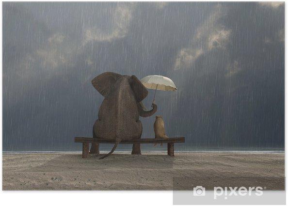 Plakat Słoń i pies siedzieć w deszczu - Życie