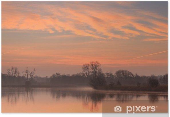 Plakat Słońce rośnie w małym stawie w Holandii. - Pory roku