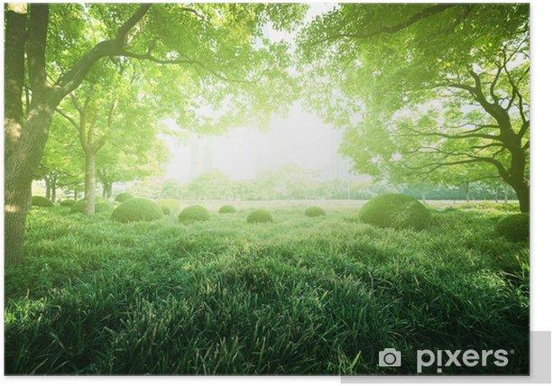 Plakat Słoneczny dzień w parku latem - Miasta azjatyckie