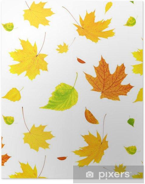 Plakát Souvislosti s létajícími podzimní listí - Roční období