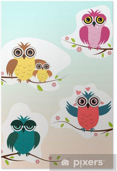 Plakát Sovy - Ptáci