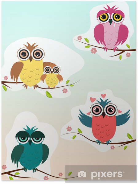 Plakat Sowy - Ptaki