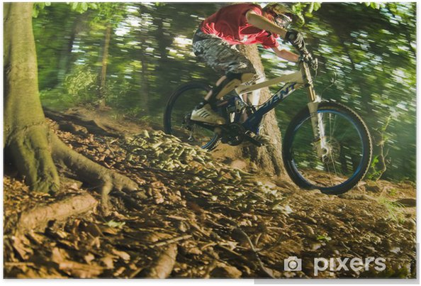 Plakat Spadek - Sporty indywidualne