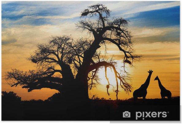 Plakat Spektakularny zachód słońca z baobab afrykański i żyrafy - Tematy
