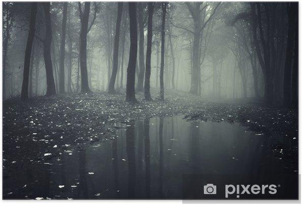 Plakat Staw w lesie z mgły - Tematy