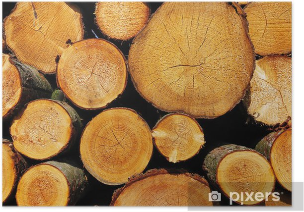 Plakat Stos drewnianych bali - Tekstury