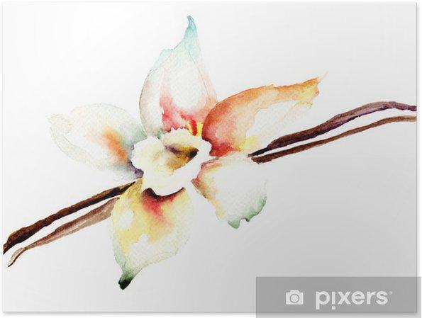 Plakat Strąki wanilii i kwiatów - Kwiaty
