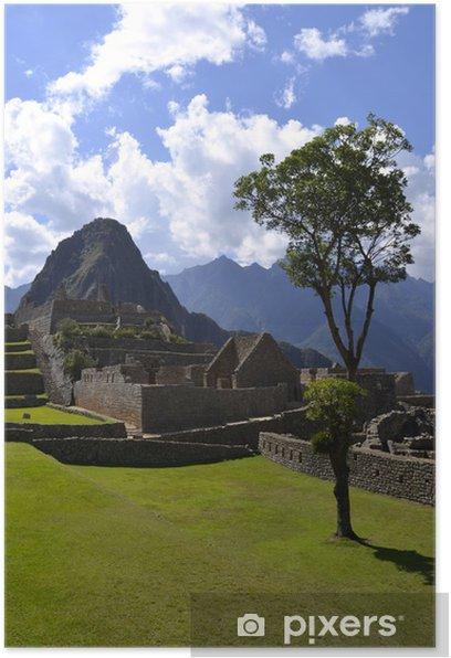 Plakát Strom na místě Machu Picchu s Huayna Peak - Památky