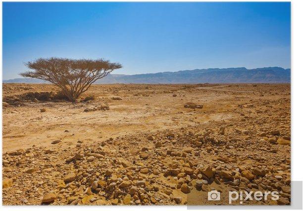 Plakát Strom v poušti - Pouště