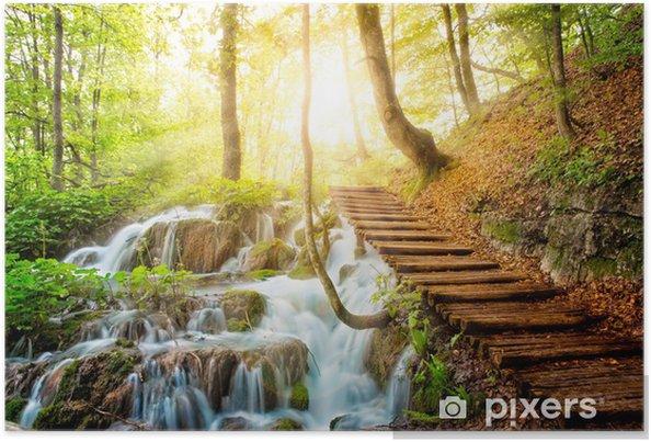Plakat Strumień z krystaliczną wodą w głębi lasu - Tematy