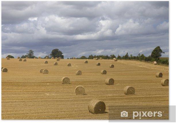 Plakat Suche siano - Krajobraz wiejski