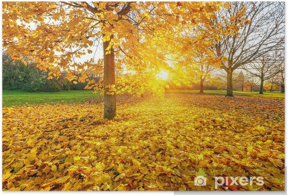Plakát Sunny podzimní listí - Roční období