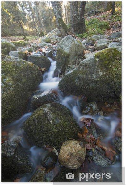 Plakat Świeże potok płynący - Woda