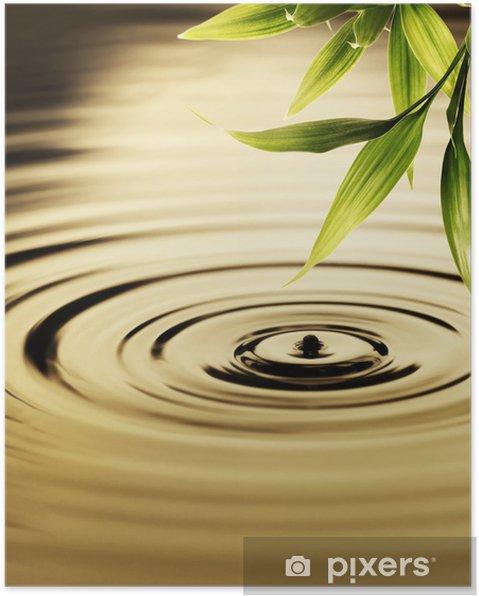 Plakat Świeżych liści bambusa nad wodą - Style