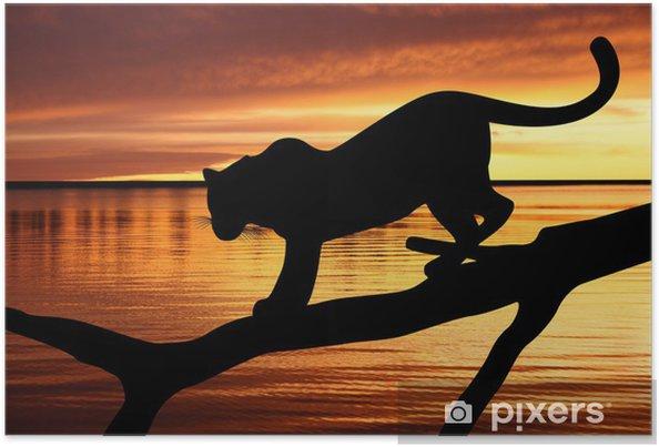 Plakat Sylwetka lampart na gałęzi na tle zachodu słońca - Tematy