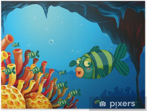 Plakat Szkoła z paskiem-kolorowe ryby w morzu - Zwierzęta żyjące pod wodą