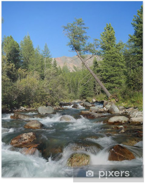 Plakat Tajga rzeki. - Woda