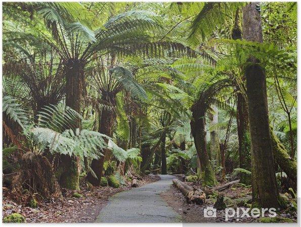 Plakat Tasmania Mt polowe Drzewa paproć niepełnosprawnych - Tematy