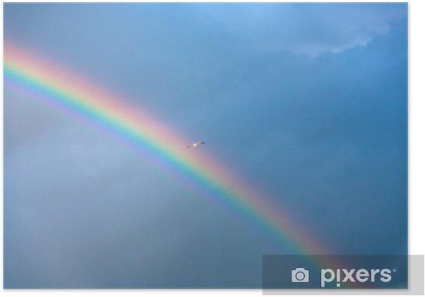 Plakat Tęcza i mewa w głębokim niebieskim pochmurne niebo - Niebo