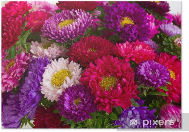 Plakat Tło jesień kwiaty aster - Kwiaty