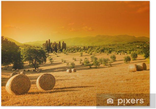 Plakat Toskania krajobraz, lato - Tematy